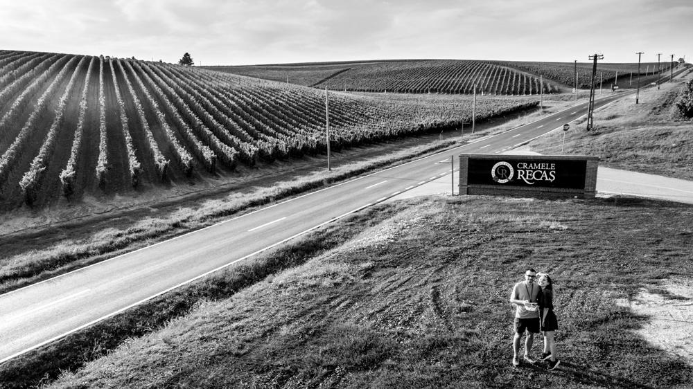 making-of recas winery golden vineyards by popotam productions video agency dji phantom 4 pro plus costin marian maria nistor