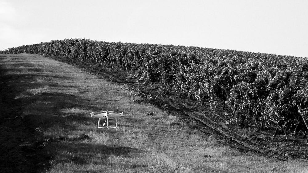 dji phantom 4 pro plus drone cramele recas recas winery by popotam productions video agency