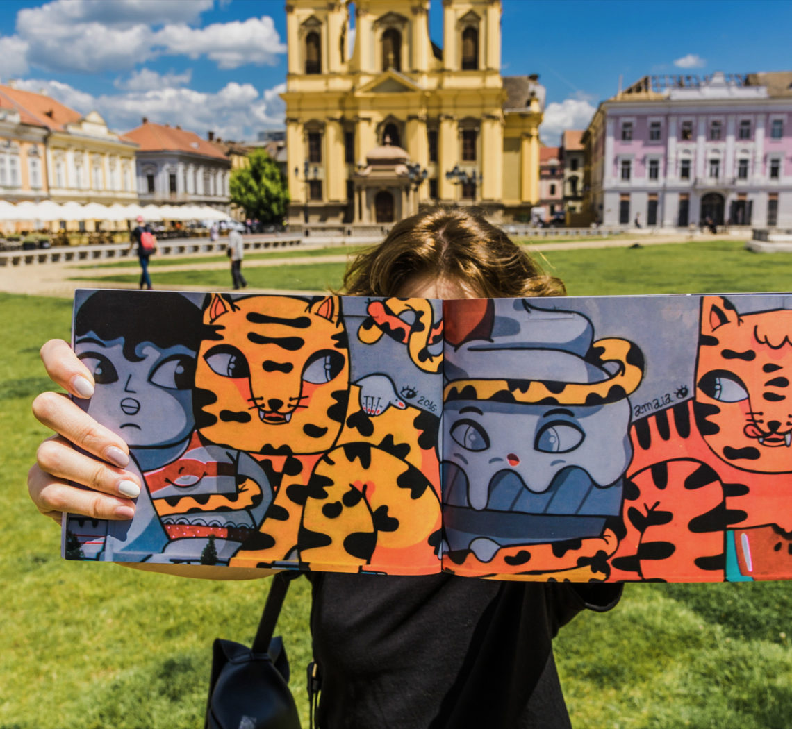 fisart street art hyperlapse timisoara book by popotam productions video agency