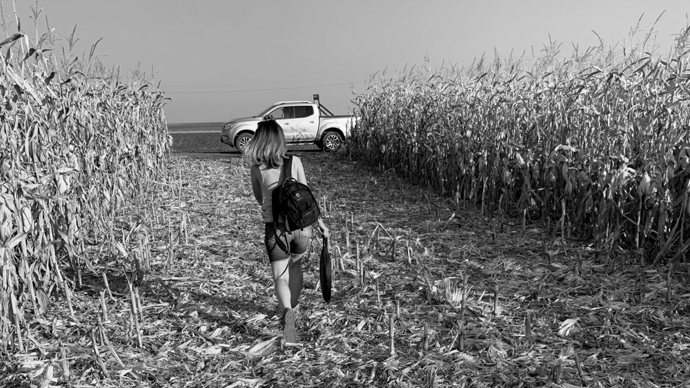 making-of mewi the farmers video by popotam productions video agency timisoara maria nistor cornfield